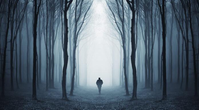Frases de oscuridad | Donde los temores afloran