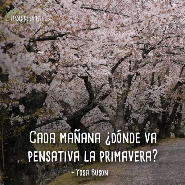 Frases-de-Primavera-3