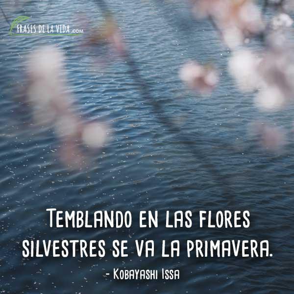 Frases-de-Primavera-4