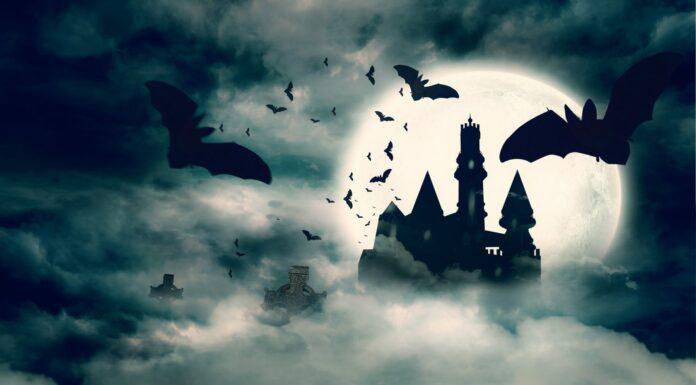 Frases de Drácula, El vampiro de Bram Stoker
